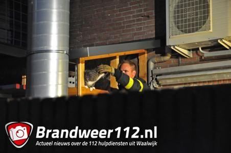 Brandweer redt vermiste kat in Waalwijk