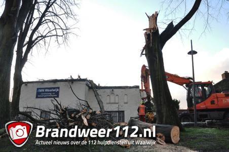 Boom valt op kantoorpand aan de Winterdijk Waalwijk