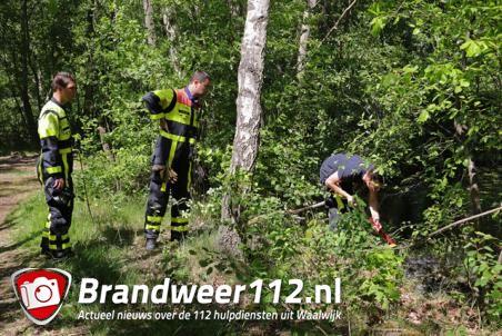 Twee brandjes in bossen aan de Drunenseweg Waalwijk