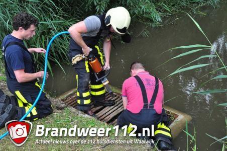 Brandweer Waalwijk redt zes jonge eendjes uit duiker in Waalwijk