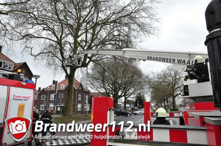 Gevaarlijk hangende takken aan de Burgemeester van der Klokkenlaan Waalwijk
