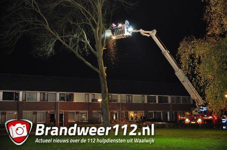 Brandweer haalt zieke boom neer aan de Richard Wagnerstraat Waalwijk