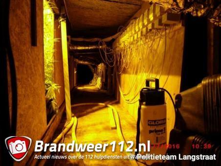 Pand dicht na vondst van 350 hennepplanten in Waalwijk