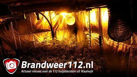 Politie treft hennepkwekerij aan in woning aan de Grotestraat Waalwijk