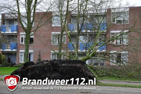 Veel stormschade in Waalwijk
