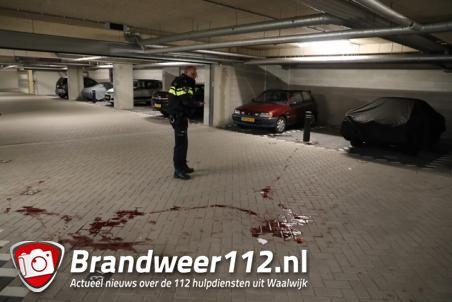 Oudere vrouw zwaargewond na aanval van hond in Waalwijk