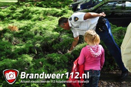 Bosjes coniferen in brand aan het Distelplein Waalwijk