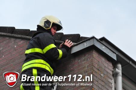 Spreeuw vast in dakgoot aan de Beethovenlaan Waalwijk