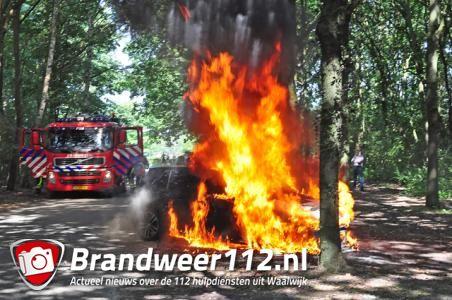 Jonge bestuurder raakt gewond bij felle autobrand in Waalwijk