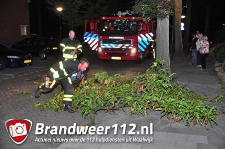 Tak valt uit boom in Waalwijk en mist voetganger op een haar in Waalwijk