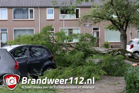 Grote tak valt op twee auto's aan de Prof. Treubstraat Waawijk