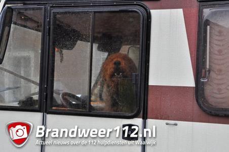 Camper met hond achtergelaten bij stoplicht in Waalwijk