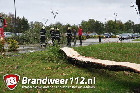 Boom breekt af op zwembad terrein aan de Drunenseweg Waalwijk
