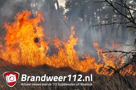 Zeker 50 hectare verwoest bij brand in bossen aan de Drunenseweg Waalwijk