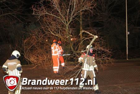 Boom op wegdek door storm aan de Beethovenlaan Waalwijk