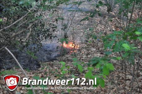 Brandweer rukt massaal uit voor bosbrand in Waalwijk