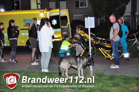 Herdershond trekt vrouw van fiets aan de Burg. Teijssenlaan Waalwijk