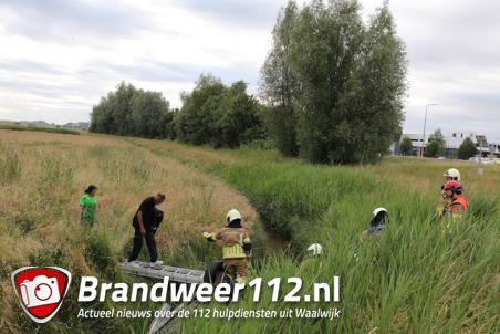Auto op zijn kop in de sloot langs de A59 (Maasroute) Waalwijk