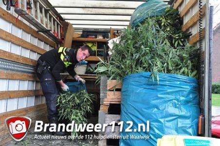 UPDATE: Slaapkamers vol met hennepplanten aan de Guido Gezellestraat Waalwijk