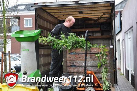 Politie gaat af op inbraakmelding maar treft hennepkwekerij aan in Waalwijk