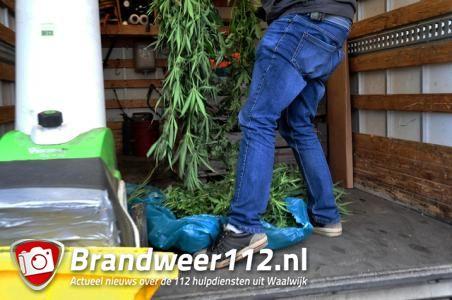 Hennepkwekerij in woning in Waalwijk ontdekt, planten direct vernietigd