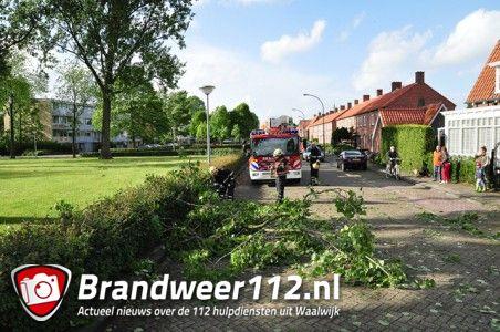 Grote tak op wegdek aan de Baardwijksestraat Waalwijk