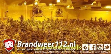 Hennepkwekerij aangetroffen in woning aan de Prof. Nolenslaan Waalwijk