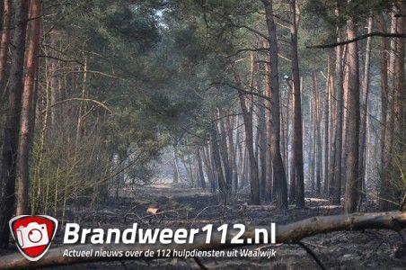 Dag na de grote brand in bossen aan de Drunenseweg Waalwijk